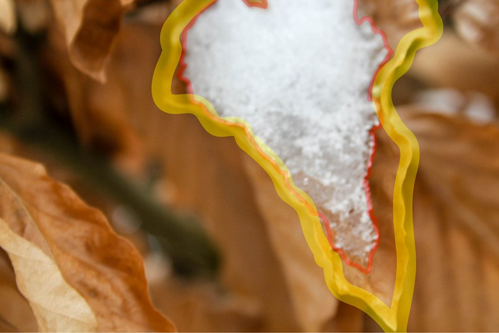 Leaf and snow with annotation